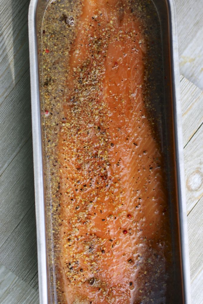 whole salmon curing in liquid
